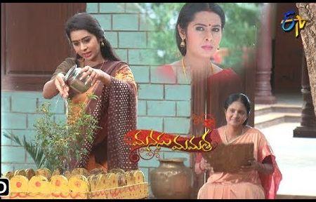 Manusu Mamatha Daily Serial